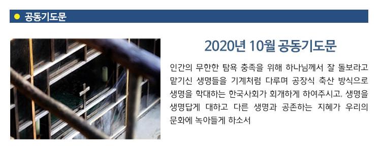 2010_10.jpg